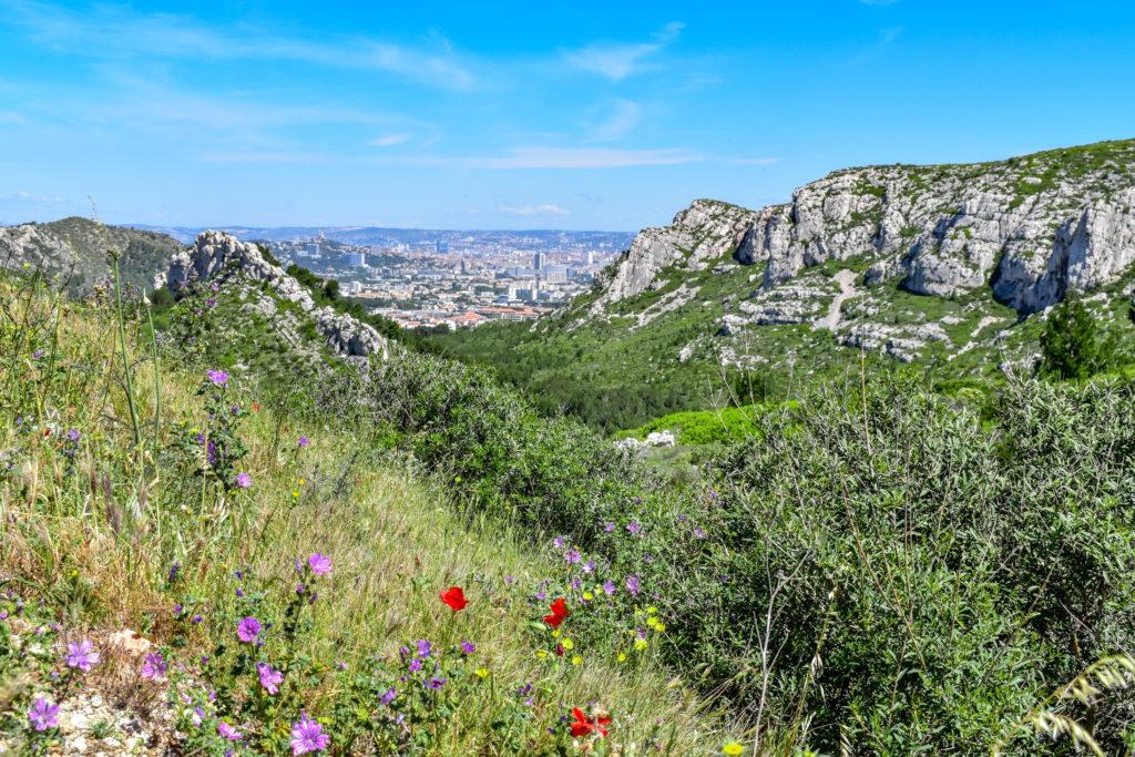 Les falaises et au loin la ville de marseille