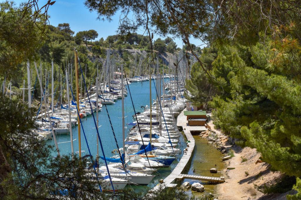 quelques bateaux dans un petit port entouré de pinède